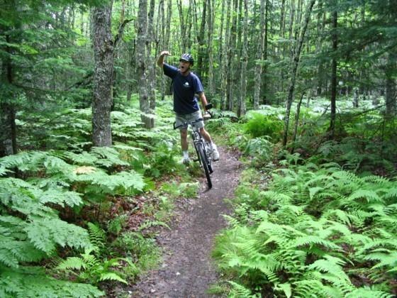 bikeforest2